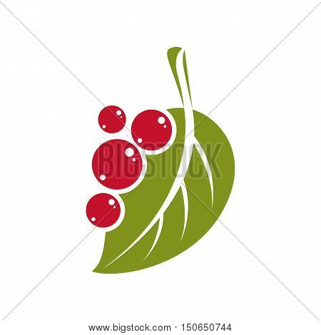 Single Vector Flat Green Leaf With Berries Or Seeds. Herbal And Botany Symbol, Spring Season Natural