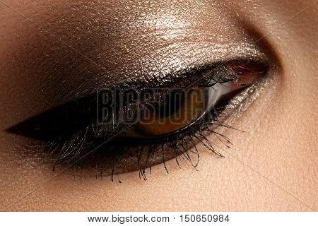 Brown Eye Makeup. Eyes Make-up. Beautiful Eyes Vintage Style Mak
