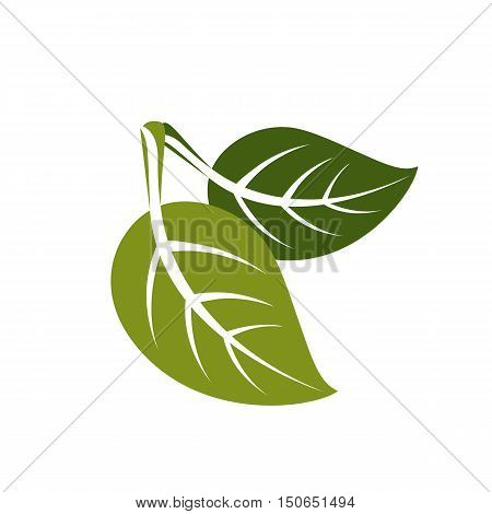 Two Spring Leaves Simple Vector Icon, Nature And Gardening Theme Illustration. Stylized Tree Leaf, B