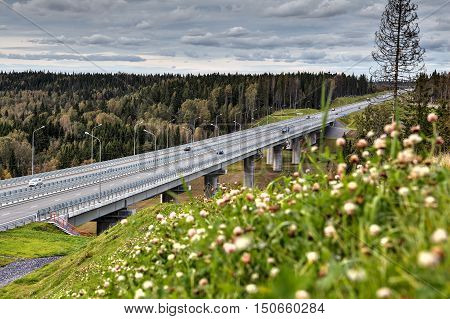 Highway bridge viaduct over the forest stream in the Russian countryside summer sunny day.