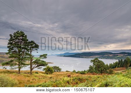 Western Kyle of Bute, also known as Argyll's Secret Coast in the Firth of Clyde, seen here from north of villages Kames and Tighnabruaich to the right