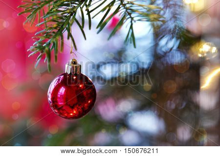 Christmas Decoration. Christmas Fir Tree Branches and decoration with red bauble . Christmas background.