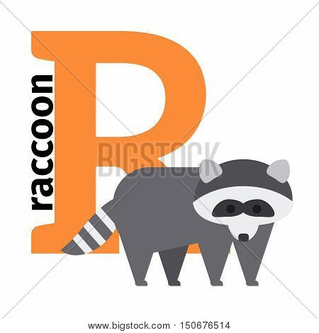 English animals zoo alphabet with letter R. Raccon vector illustration
