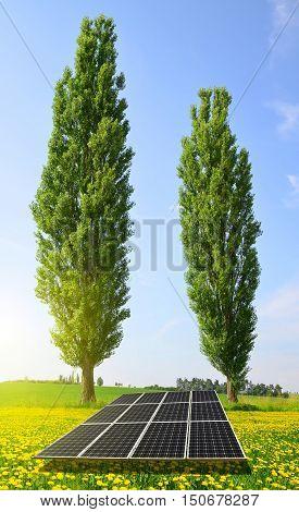 Solar panels in summer landscape. Clean energy.