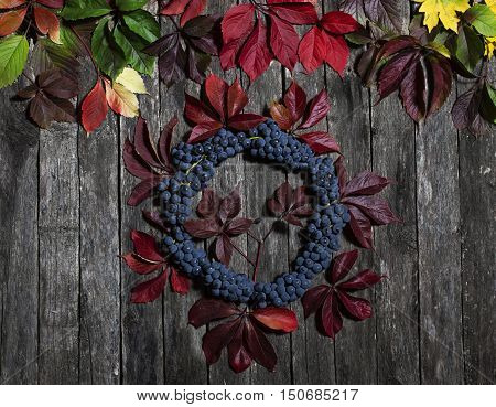 autumn leaves of wild grapes and berries on old wooden cracked background. Autumn background.