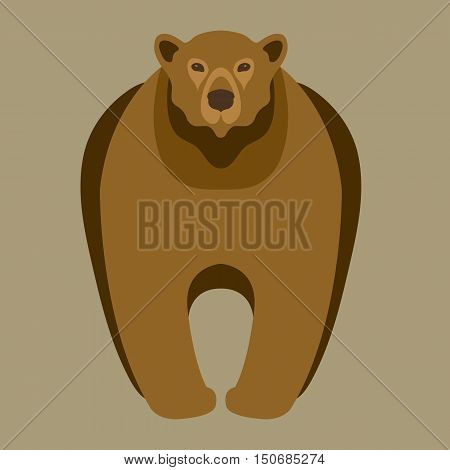bear adult vector illustration style Flat front