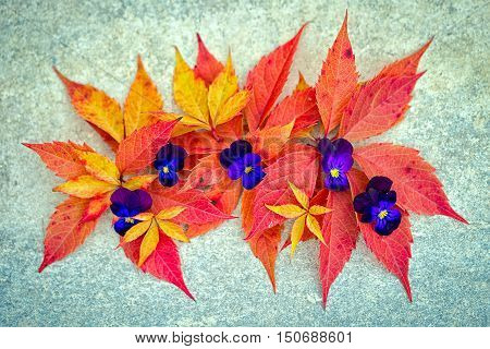 decor from autumnal leaves and flowers at the neutral grey background