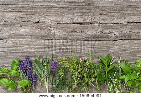 Fresh herbs on wooden background. Basil rosemary sage thyme mint dill oregano marjoram savory lavender
