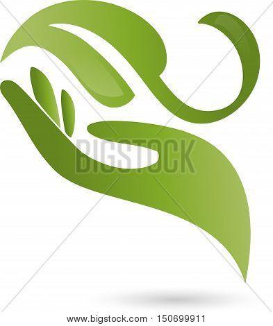 Hand and leaf in green, medical practitioner logo
