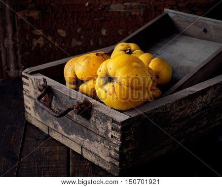 ripe fragrant quinces in a wooden box on a black background