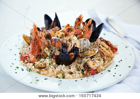 Italian risotto with shrimps, mussels, octopus, clams and tomatoes