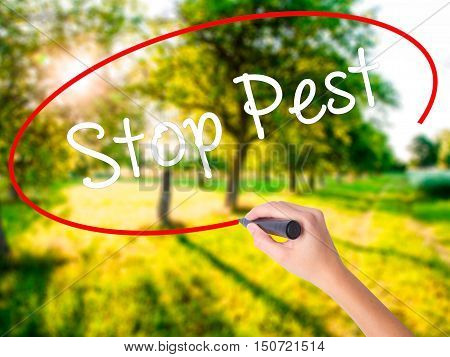 Woman Hand Writing Stop Pest With A Marker Over Transparent Board