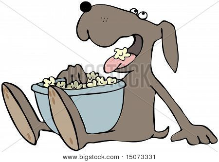Dog Eating Popcorn