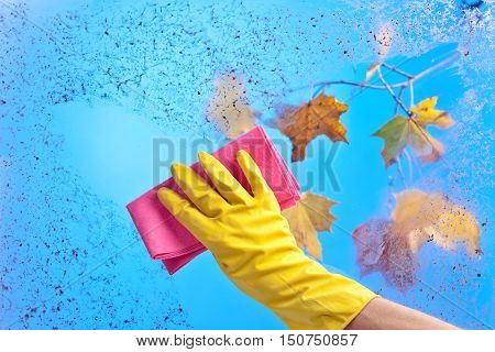 Hand In Rubber Glove Cleaning Window On A Blue Sky Background