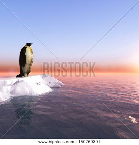Antarctic penguin on ice - 3D rendering