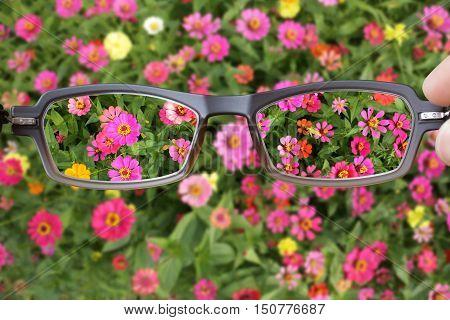 Eyeglasses make Clearer Vision for Myopia Presbyopia