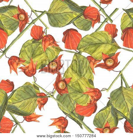 Watercolor illustration of a physalis branches with orange flowers and fruits and green leaves. Seamless pattern. Hand made painting.