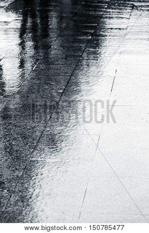 Wet Sidewalk With Water Puddles And Reflection Of Trees During Rain