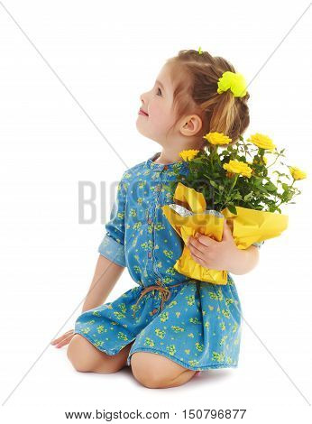 Beautiful little girl in a blue short dress. Girl kneeling with a beautiful bouquet of yellow flowers.Isolated on a white background.