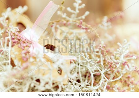 Soft tender pastel pink background with wooden heart and plants with copy space. Can be used like a vintage postcard for Valentine day, Mother day, Easter and wedding