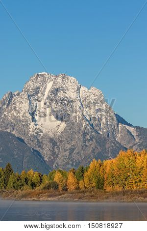 Mt. Moran and Aspens in fall in teton national park Wyoming