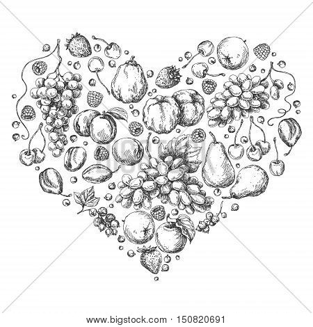 Set of different fruits arranged in heart shape. Hand drawn sketch of apple pear grape quince plum apricot cherry and berries.