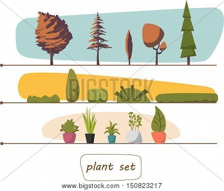 Illustration of houseplants, indoor and office plants in pot. Set of trees and shrubs.