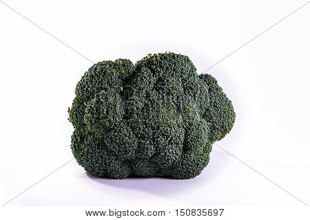 Single Brocoli Stem Top Bush Vegetable Fresh Cooking Raw Ingredient Isolated White Background Detail