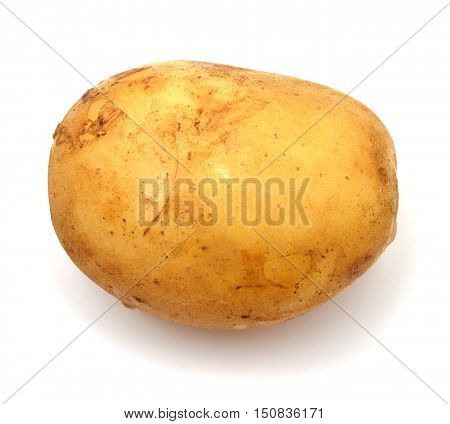 Potato isolated on white background. One. Yellow.