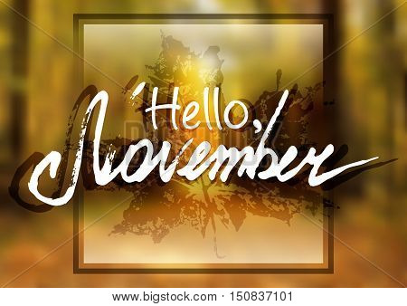 Welcoming card with white hand written lettering Hello November on natural blurry background from autumn forest and maple leaf. Vector illustration