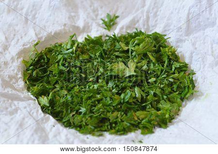 Green Shallot Coriander