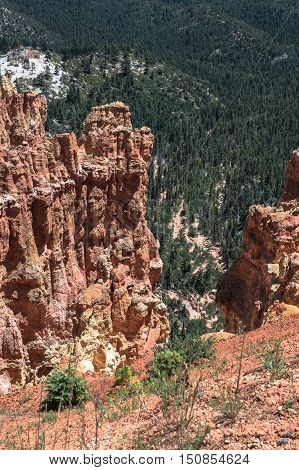 Hoodoos and forest view from Agua Canyon in Bryce Canyon National Park, Utah