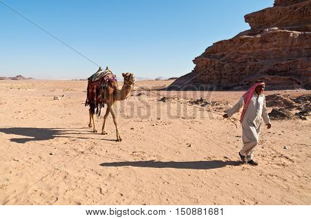 Wadi Rum Jordan - November 20 2010: Camel and arab handler (Bedouin man) walk in the desert landscape at November 20 2010 in the valley of Wadi Rum Jordan