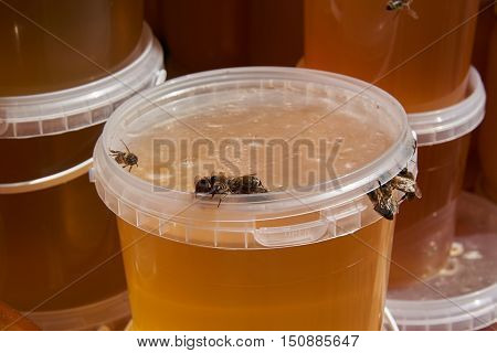 Bees honey pull out from under the lid not tightly closed plastic buckets