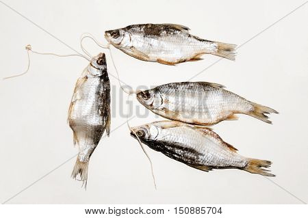 Dried fish on the table. Salty dry river fish on a white background. Dead dry salty fish - snack to beer. Isolated on white. .
