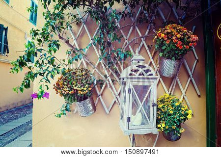 close up of flower pots in Sardinia Italy
