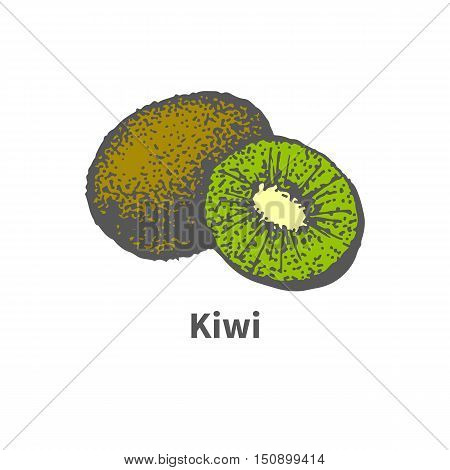 Vector illustration doodle sketch hand-drawn ripe juicy kiwi and cut a piece half. Isolated on white background. The concept of harvesting. Vintage retro style.