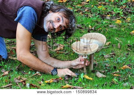 man cutting edible mushroom in the forest