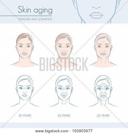 Skin aging stages on female faces skincare and beauty infographic