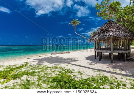Tropical vibrant natural beach on Samoa Island with palm tree and fale