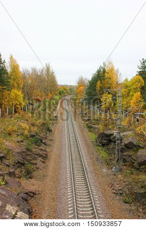 Rail road train track pathway long pattern colorful autumn fall park nature landscape. Transit transportation industrial background. Travel, trip, journey through forest, park, trees nature concept Top view