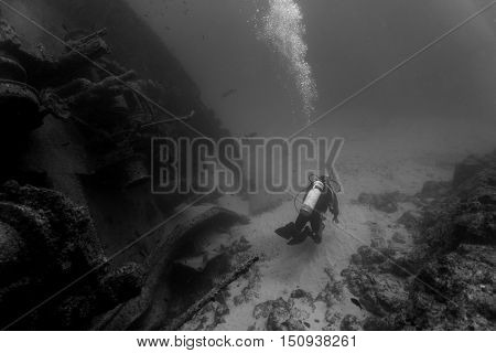 A diver in front of a sunken ship in the waters outside Cape Verde
