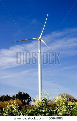 Wind turbine on a beautiful green meadow, energy concept