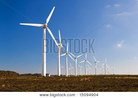 Wind-turbines farm generating clean power energy