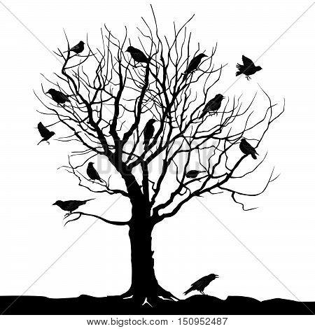 Bird on tree branch. Wildlife landscape. Winter tree with birds on twig vector silhouette illustration