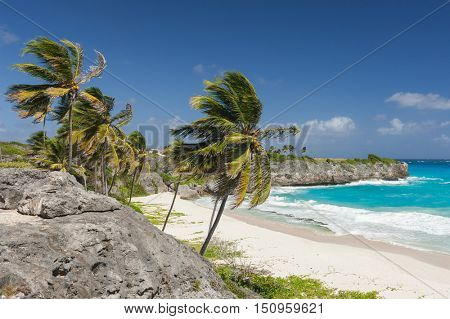 Bottom Bay is one of the most beautiful beaches on the Caribbean island of Barbados. It is a tropical paradise with palms hanging over turquoise sea and a pirate cave