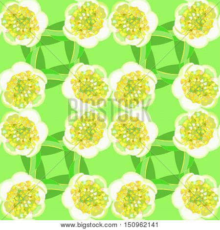 Seamless Pattern With Tea Bush Camellia Chinese On The Green. Vector Illustration