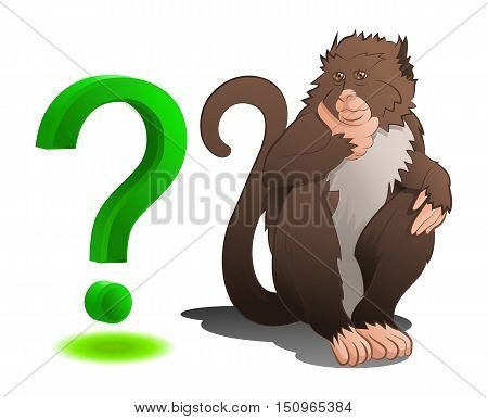 illustration of an adorable baboon monkey sitting with question mark in isolated white background