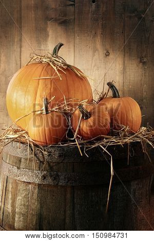 Autumn still life with pumpkins on barrel