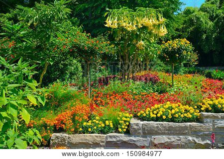 Colorful blooming flowerbed and trees at summer park.